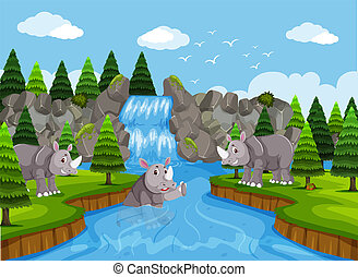 rhinocéros, rivière