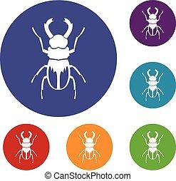 Rhinoceros beetle icons set