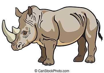 rhinoceros ,side view image isolated on white background