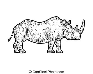 rhinoceros sketch engraving vector illustration. T-shirt apparel print design. Scratch board imitation. Black and white hand drawn image.