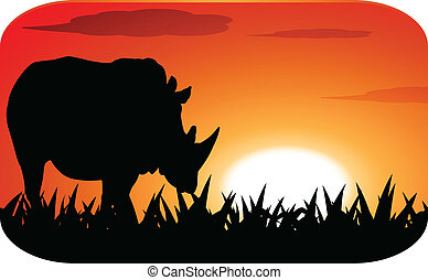 Rhinoceros with sunset - Rhinoceros silhouette with sunset