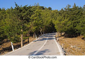 rhodes, 道, 森林, 島, ギリシャ
