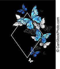 rhombus, borboleta, morpho