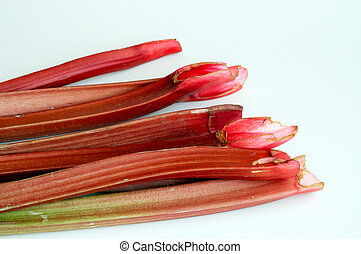 Rhubarb - A bunch of fresh organic red rhubarb