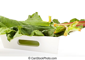Rhubarb on the wooden tray in front of white background