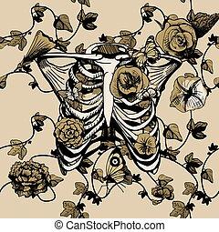ribcage, illustration