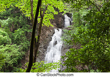 rica, costa, montezuma, 滝