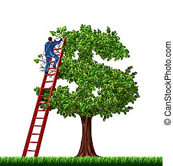 ricchezza, amministrazione