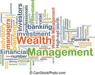 ricchezza, amministrazione, fondo, concetto