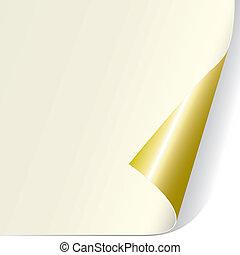 riccio, pagina, (vector)