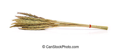 Rice close up isolated on white background