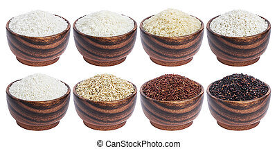 Rice collection isolated on white background