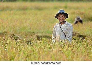 Rice farmer - Happy farmer in rice field, Thailand