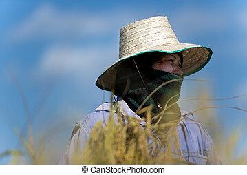rice farmer portrait