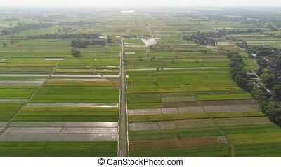 Rice field and agricultural land in indonesia - aerial view...