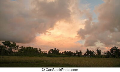 Rice fields on Bali island. Sunset with Moon and differently shaped clouds. Indonesia.