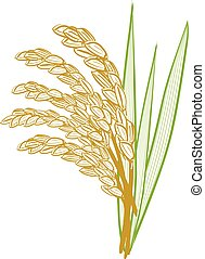 Rice grain with leaves.