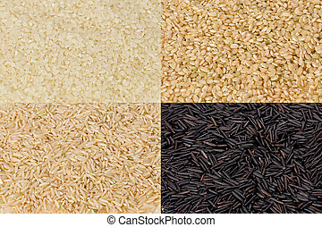 Rice Grains - Composite of sushi rice, short-grained brown...