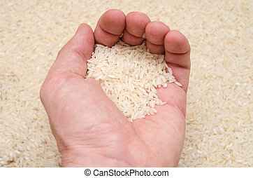 rice in hand