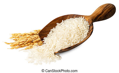 rice in wooden scoop isolated