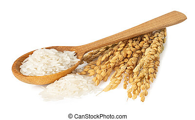 rice in wooden spoon isolated