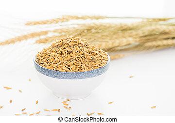 Rice paddy bowl