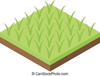 Rice plantation icon, isometric style