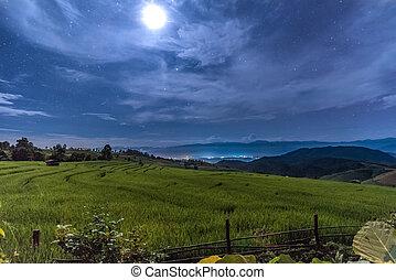 Rice Terraces at Ban Papongpieng at night
