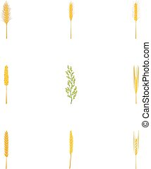 Rice ,wheat ,corn,rye,barley icons set, cartoon