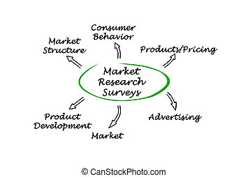 ricerca mercato, esami