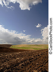 Rich California Farm Land and Deeply Plowed Furrows, Beneath Deep Blue Spring Sky and Dramatic Cumulus Clouds
