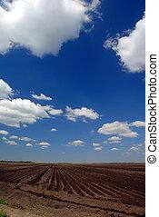 California Farm Land