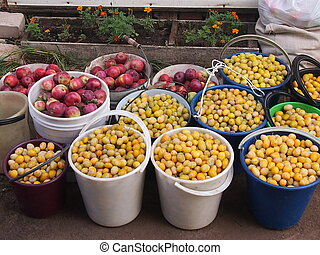 Rich harvest of plums and apples