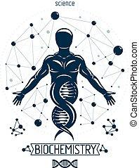 richting, grafisch, dna, gecreëerde, voortzetting, symbool, wireframe, mannelijke , illustratie, depicted, vector, connections., biotechniek, genetics., sterke