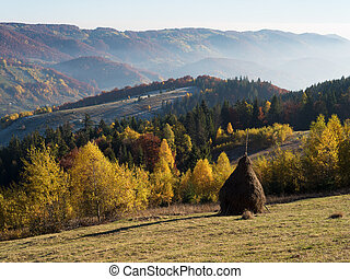 Rick dry hay on a mountain meadow - Rural landscape in...