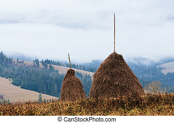Rick dry hay - Two stack of dry hay in the mountainous...