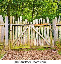 Rickety gate - A rickety wooden gate in a rural forest
