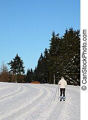 ricreazione, inverno, paese, -, croce, pattinaggio, nordico