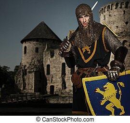 ridder, tegen, middeleeuws, castle.