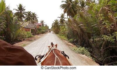 Ridding horse Mekong Delta Vietnam - POV Ridding horse ...