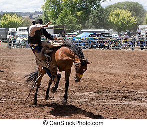A rodeo riider riding a bucking horse