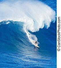 ride, kæmpe, surfer, bølge