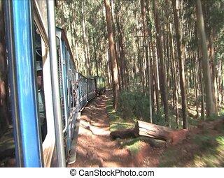 stream train - Ride the famous heritage stream train of...