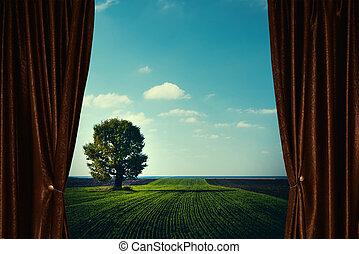 rideau, derrière, paysage arbre, agricole
