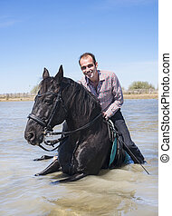 rider and horse on the beach