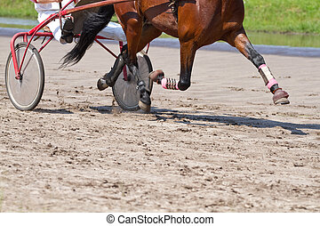 Rider on a horse race