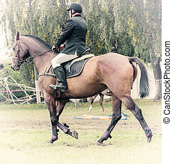 Rider on horse, vintage retro style