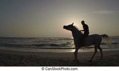 Rider on horseback at sunset and th