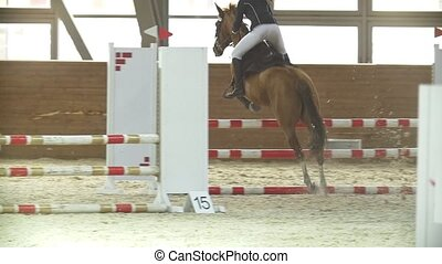 Rider on stallion jumping over hurdle at show jumping...