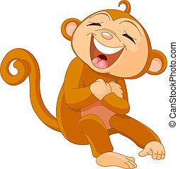 ridere, scimmia